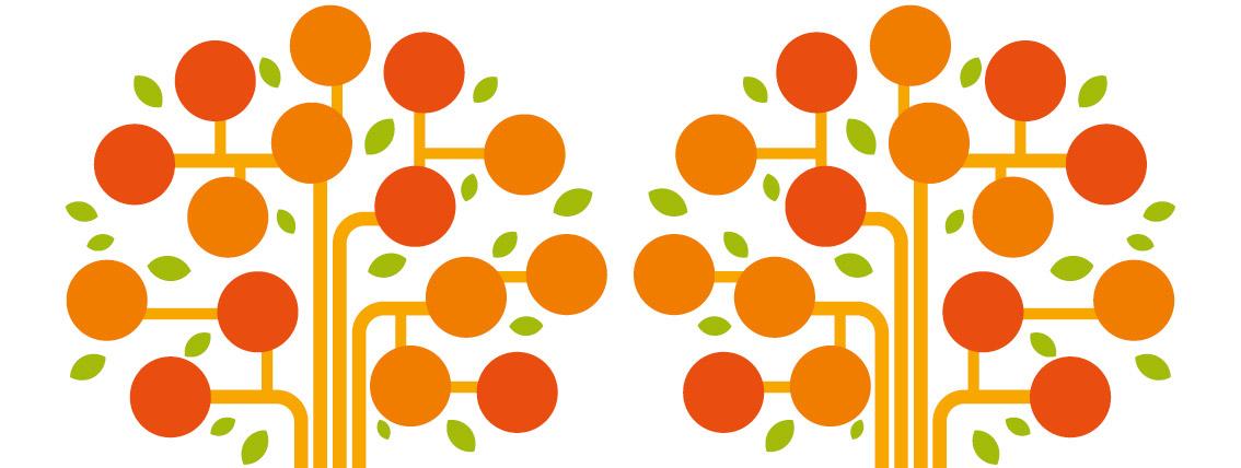 I risultati di 1 anno di attività: online il 2° Bilancio sociale di Programma integra