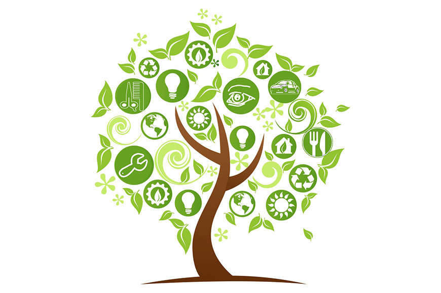 Produttività e sostenibilità: la sfida delle cooperative, il contributo di Programma integra.